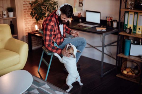 Profissionais autônomos: descubra 7 dicas para ter sucesso!